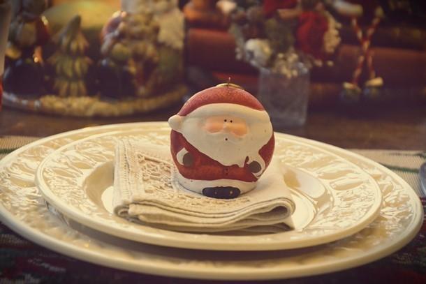 fiori-natale-decorazioni-torino-CHRISTMAS 20