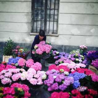 fiori-matrimonio-torino-simmi-floral-design
