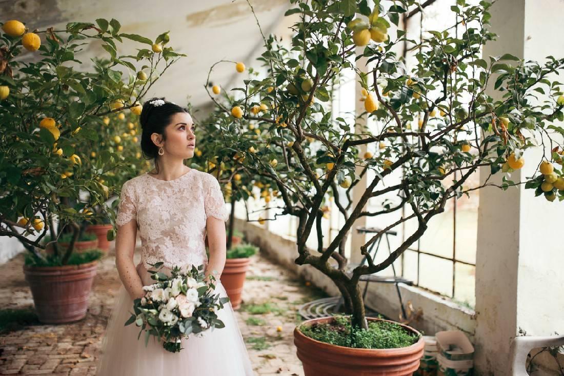 bouquet-cipria-shabby-simmi-floral-design