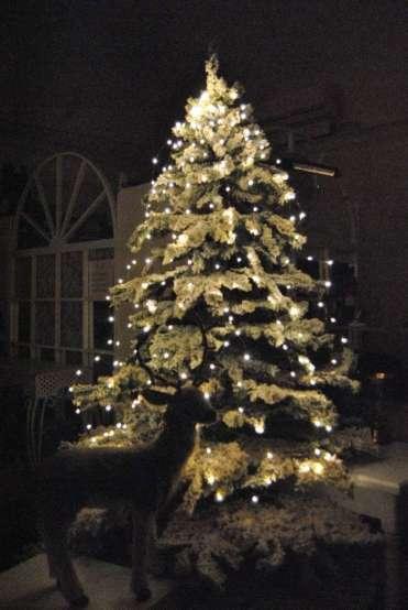 simmi-natale-decori-albero13